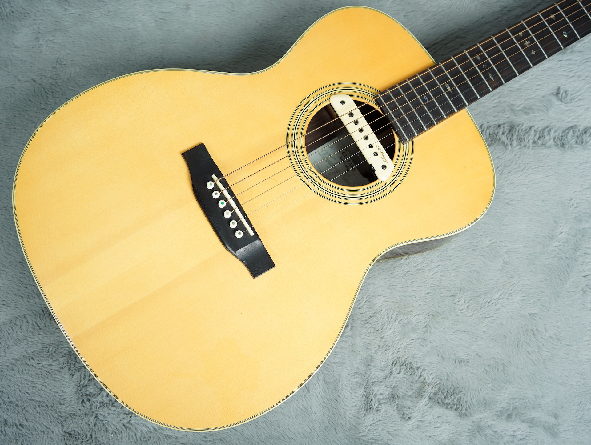 Recording King RO-27 Acoustic Guitar + HSC